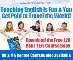 The TEFL University